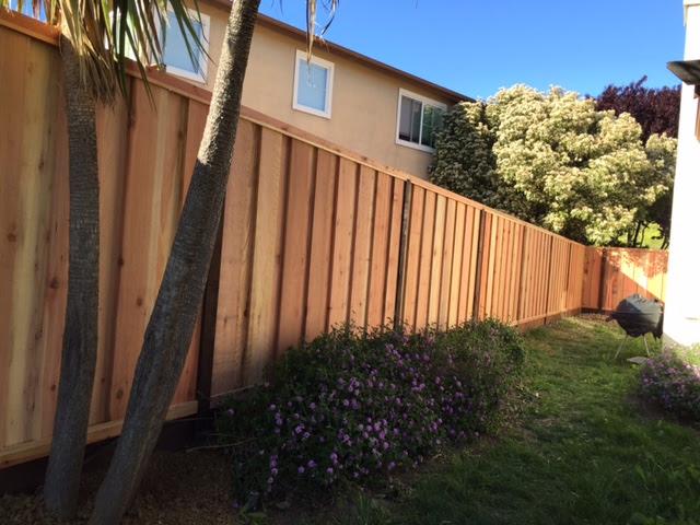redwood fence Moraga, CA