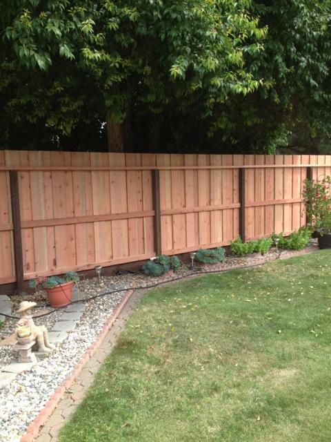 board on board backyard privacy fence 94513