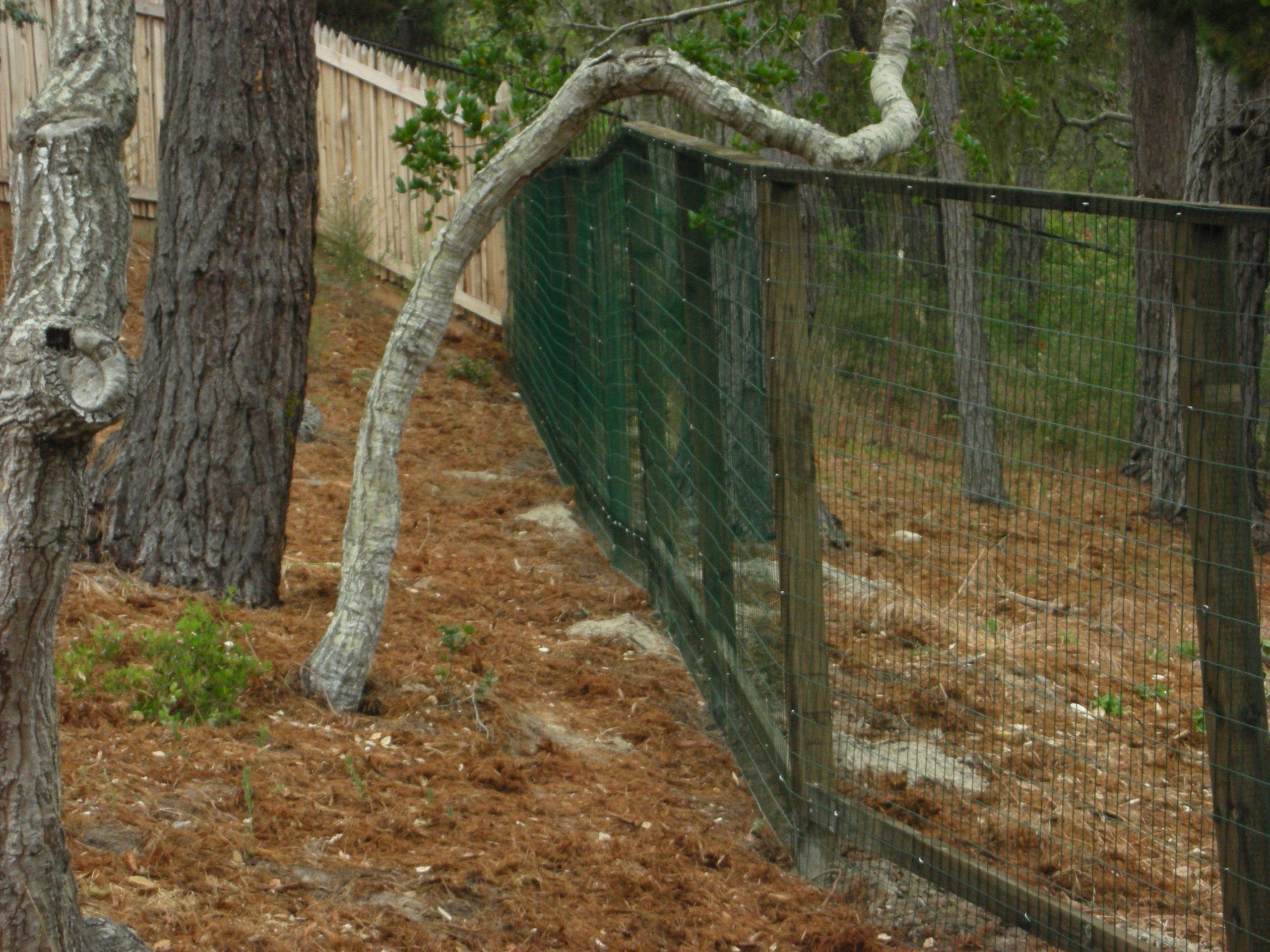 deer fencing Antioch, CA