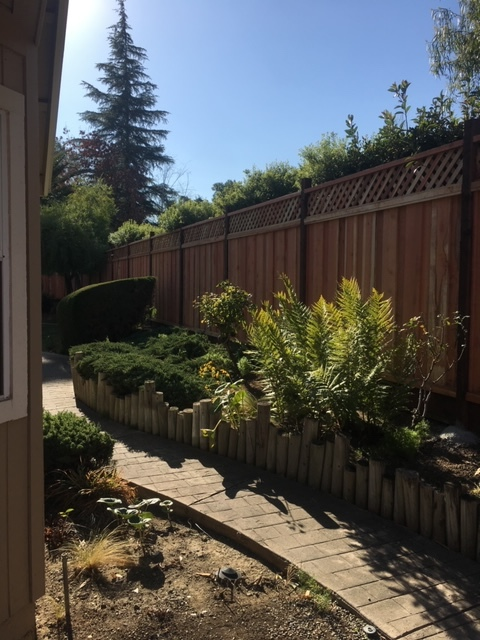 backyard wood fence with lattice 94513