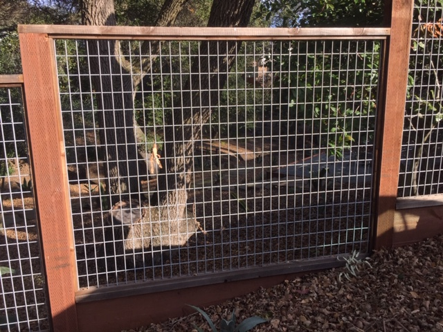 residential hogwire fence Livermore, CA